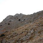 Πεζοπορώντας στα παλιά τσοπάνικα μονοπάτια των Καρυών υπό το φως της Πανσελήνου